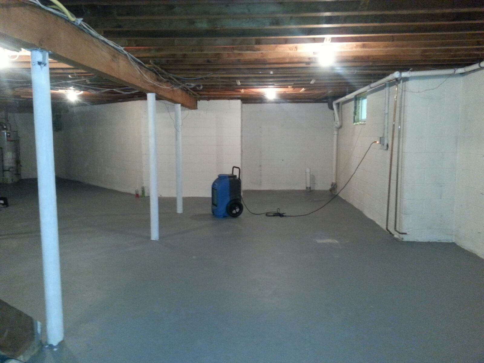 Basement Water Damage and Mold Removal in Colts Neck NJ
