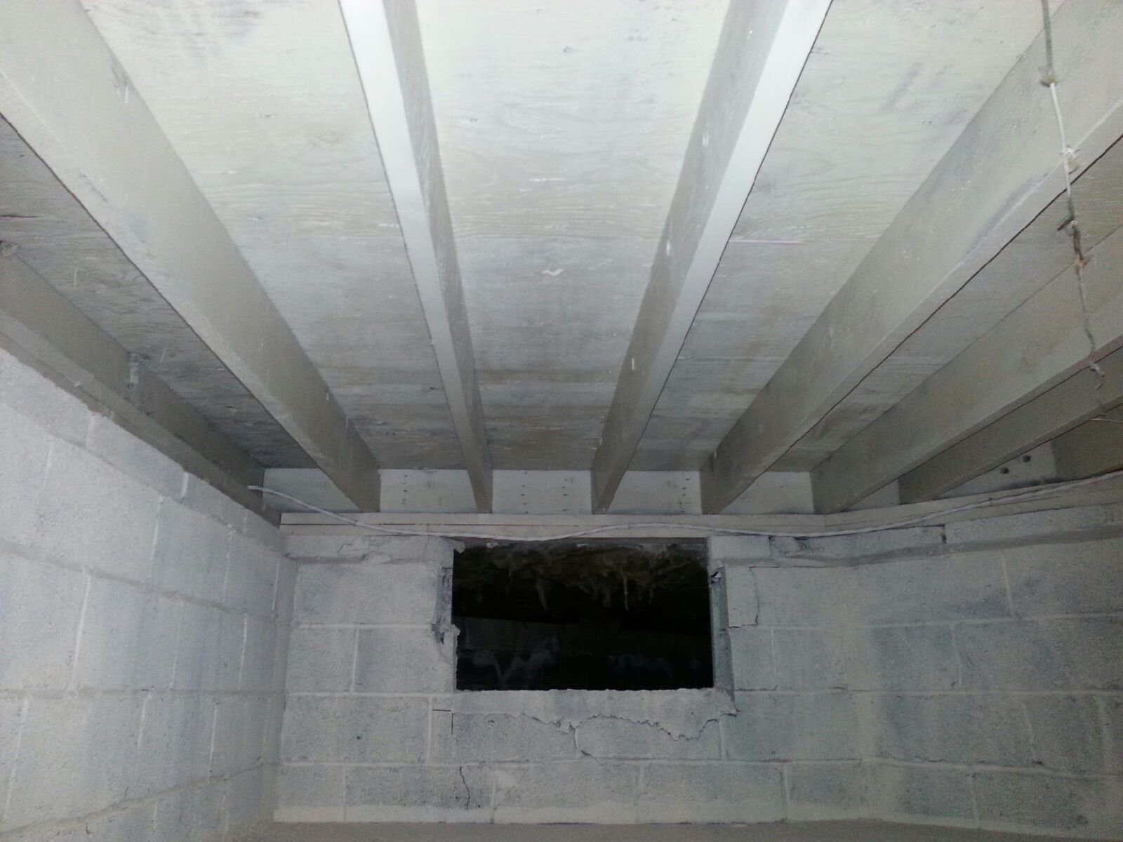 crawl space attic and basement mold removal in union nj