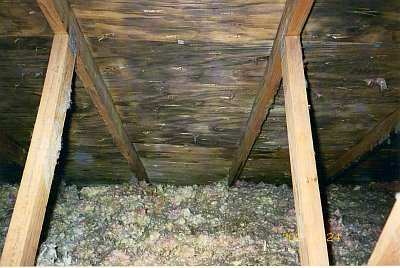 Attic Mold Removal And Remediation In Morristown Nj