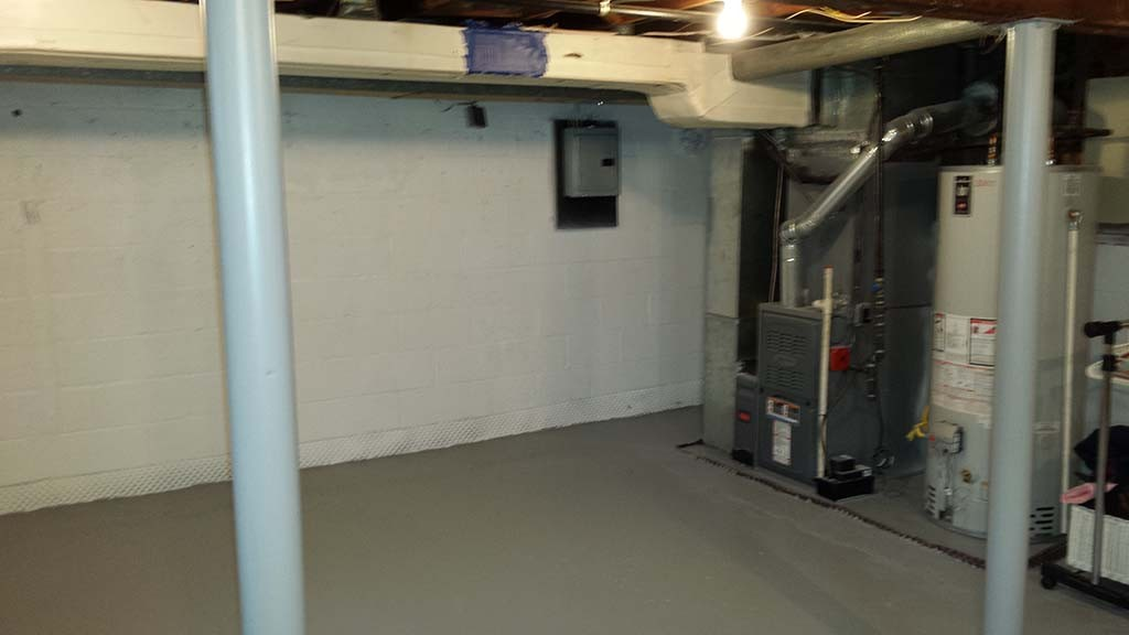 Basement Mold Removal And Remediation In East Hanover Nj